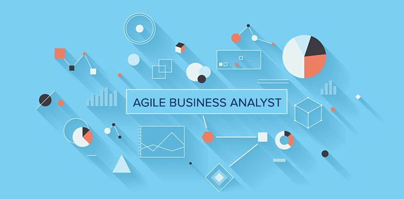 Into the minds of a Business Analyst