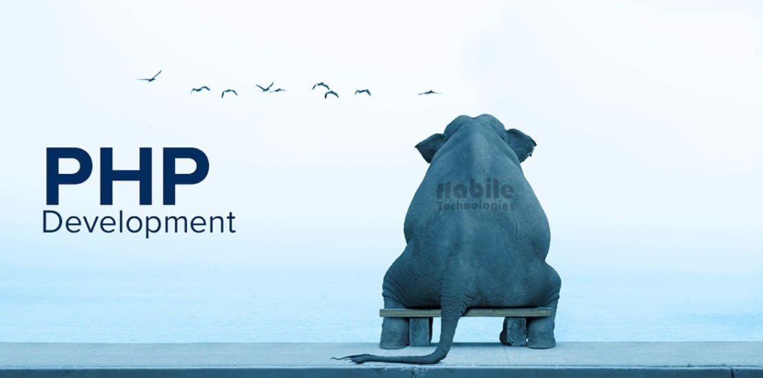 The Elephant Experience in PHP Deveopment